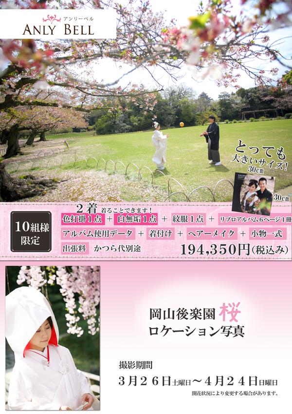 2016年岡山後楽園桜ロケーション写真